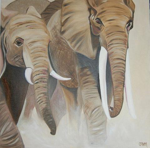 Charge d'éléphants, huile sur toile 80 x 80, 2010 (vendu)