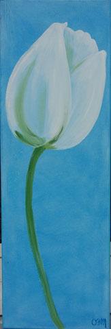 Tulipe, huile sur toile 25x75 , 2009