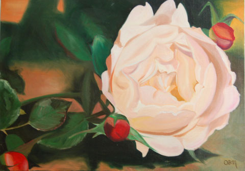 Rose, huile sur toile 50x70, 2002