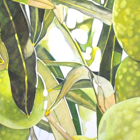 olea europaea XVI 2014 160x80cm oil/canvas
