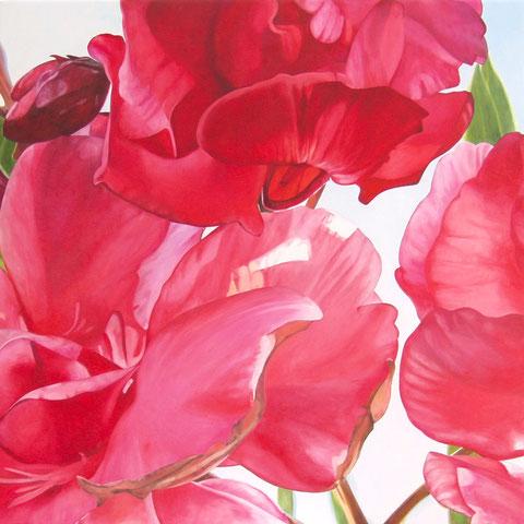 nerum oleander II 2013 80x80cm oil/canvas