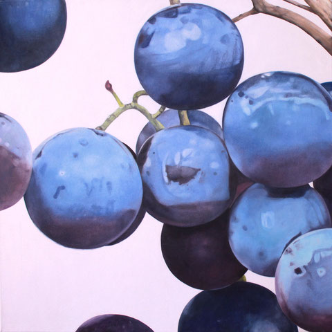 vitis vinifera VIII 2012 60x60cm oil/canvas