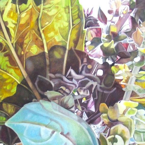 ocimum basilicum III 2014 150x80 oil/canvas
