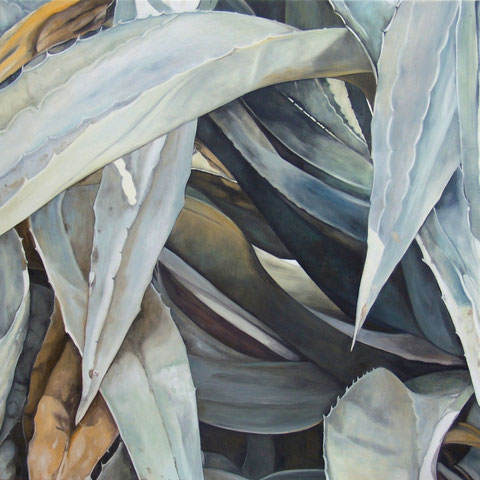 agave deserti 2012 70x70cm oil/canvas