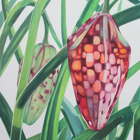 fritillaria meleagris V 2016 80x90cm oil/canvas