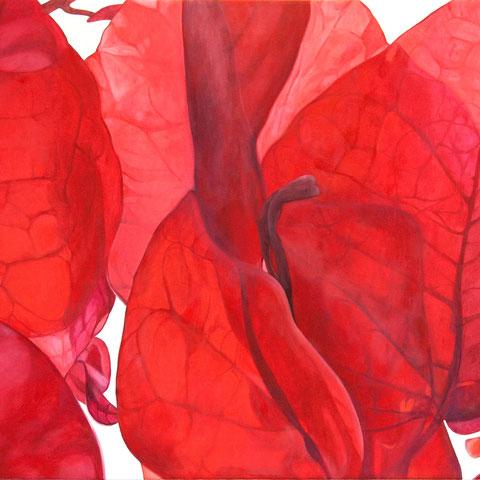 bougainvillea 2013 150x70cm oil/canvas