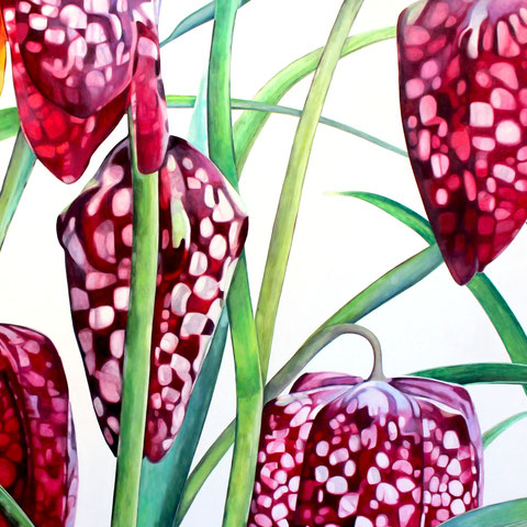 fritillaria meleagris IV 2016 160x150cm oil/canvas