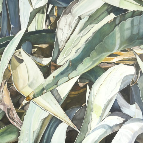agave deserti 2012 150x110cm oil/canvas