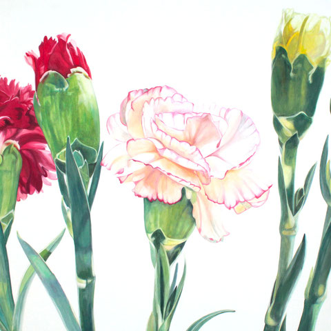 dianthus VII 100x80 oil/canvas