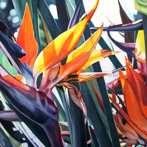 strelitzia reginae II 2016 100x100cm oil/canvas