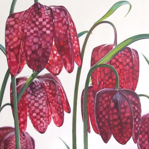 fritellaria meleagris I 2013 90x100cm oil/canvas