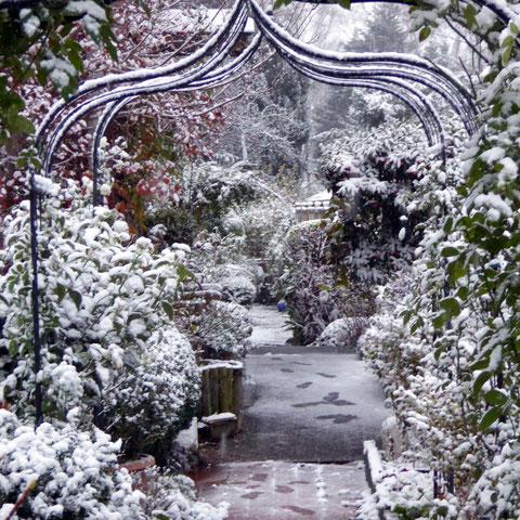 Blick Richtung Asiengarten durch Rosenbogen