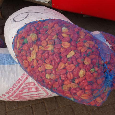 Paprika für den Weitertransport und Verkauf auf anderen Märkten in Ghana