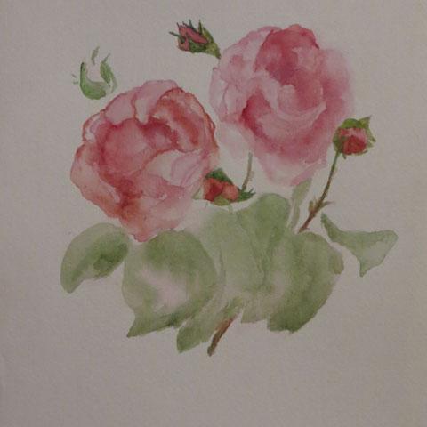 Aquarelle: les roses de mon amie