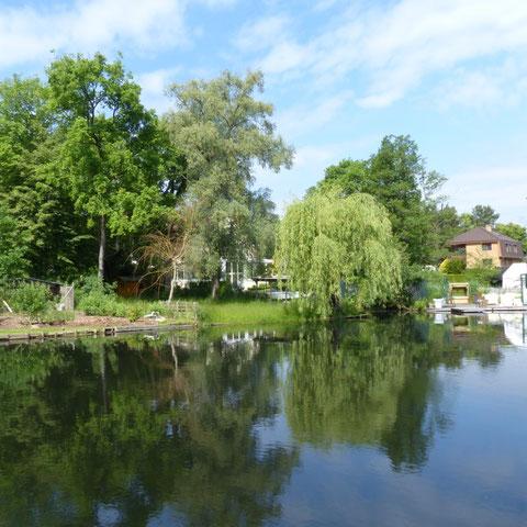 Wassergrundsück Hubertussee Rahnsdorf  Verkauf 2015, Blick auf den See