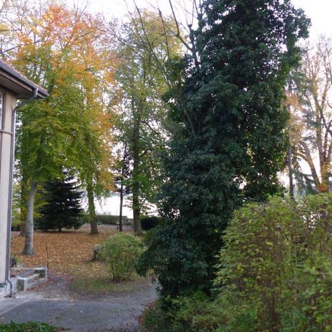 Villa am Dämeritzsee Verkauf 2015, Seitenansicht