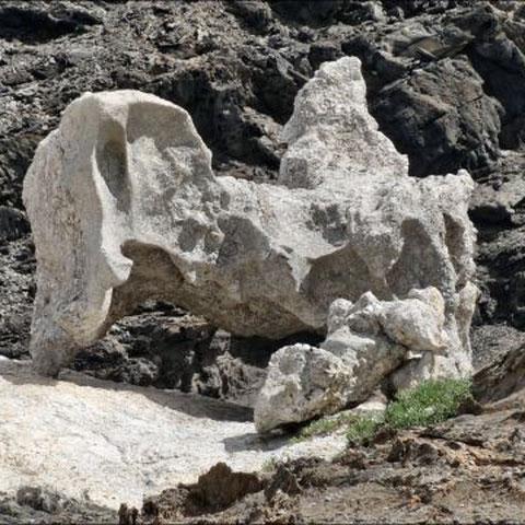 Das steinerne Vorbild