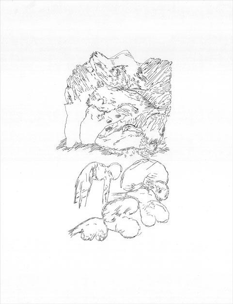 Stein und Bein am Anfang, 2012 Bleistift auf Papier, 50x38 cm