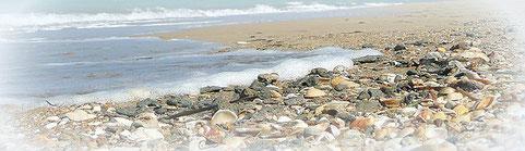 Strand zwischen Gandia und Denia, Valencia, Spanien, Foto: (c) Birgitta Kuhlmey