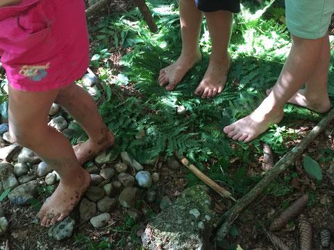 Fichtenzapfen, Farnblätter, Steine – jedes Feld ein unterschiedliches Erlebnis für die Füße, Foto: Kathrin Lichtenauer