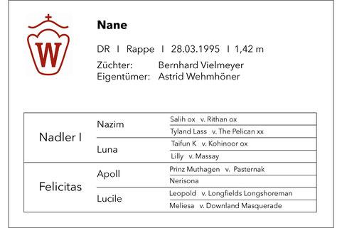 Nane; Nadler I; Ponystute; Rappe; Hof Wehmhöner