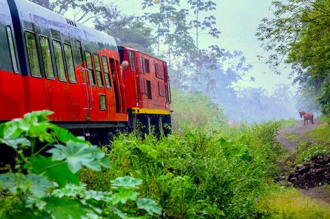 Zugfahren quer durch Ecuador