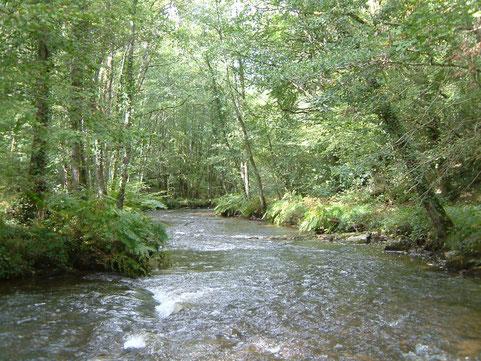 La Combade à Châteauneuf-la-Forêt