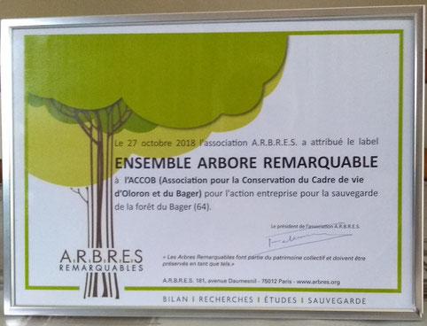 Label Arbres remarquables, remis par Georges FETERMAN à l'ACCOB pour aider à sauvegarder la forêt du Bager d'Oloron