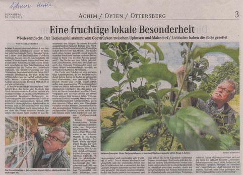 Artikel über die Wiederentdeckung einer alten Apfelsorte: Uphuser Tietjenapfel