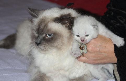 Le 22/09/13: les yeux ouverts!!! Iskander avec sa maman Chanel