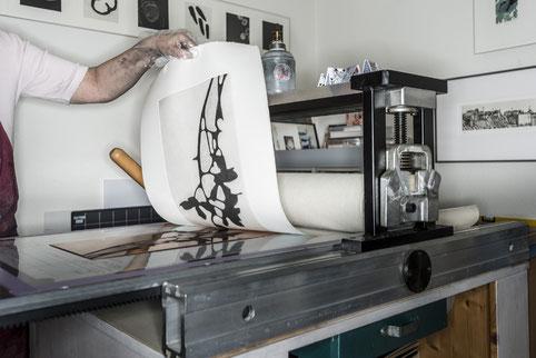 Kupferdruckpresse. Die bearbeitete Platte wird durch die Presse gedreht. Nachher kann das Papier vorsichtig abgenommen werden. Motiv Orchideenblüten.