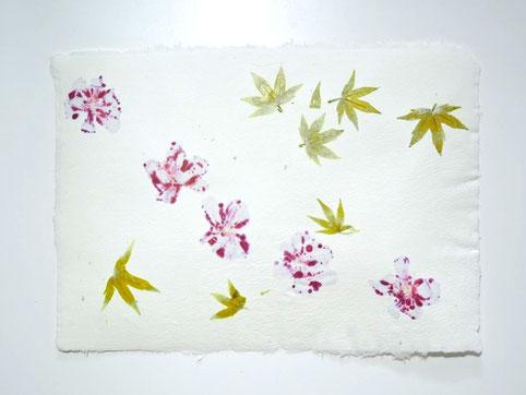 Handgeschöpftes Büttenpapier mit Blättern des Amberbaums und Pelargonienblüten