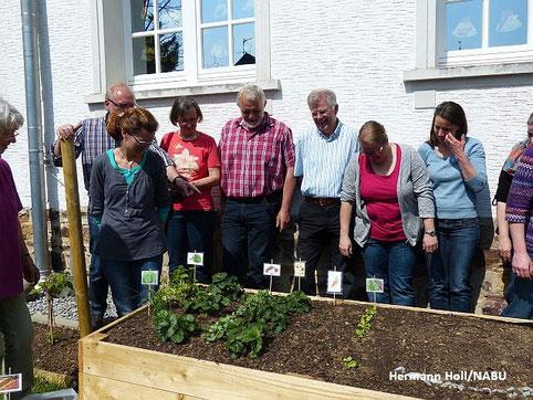 Hochbeetpaten/-patinnen bei einem Projektworkshop