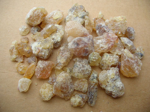 Boswellia neglecta white Kenia hell Olibanum bi-coloured Kenya frankincense Weihrauch