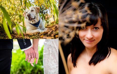 Portraitfoto Tierfoto Hochzeitsfotos