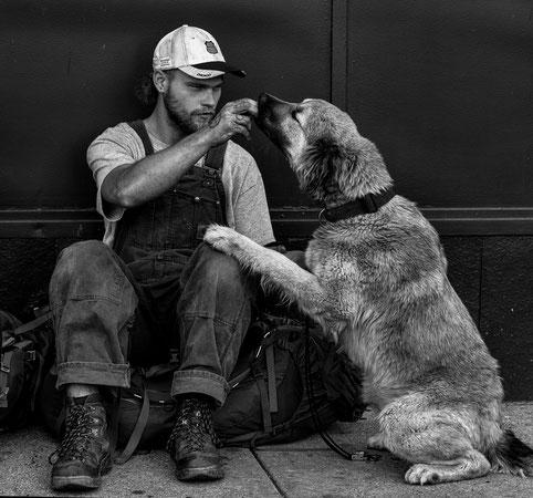 Ein Ziel, das viele Mühen lohnt: Mensch und Hund helfen, ein Team zu werden.