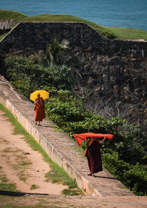 moines au Sri Lanka