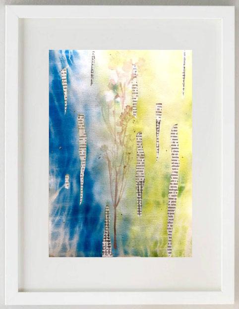 """21 / MARIA DALOISO,""""OROS GANAO"""" """"ORIGANUM = GIOIA della MONTAGNA"""", 2020, Mista/Collage, 20 x 30"""