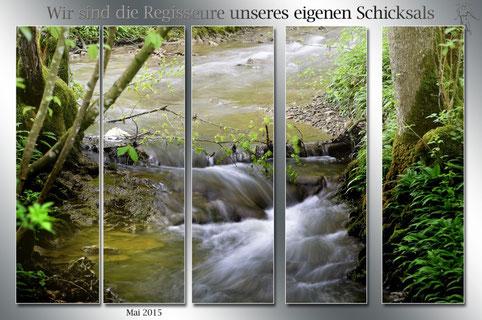 Burgstaller Naturschutzgebiet
