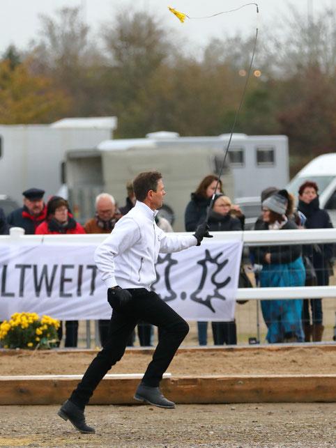 Immer im Einsatz für eine bestmögliche Präsentation der Pferde - Gerard Geling