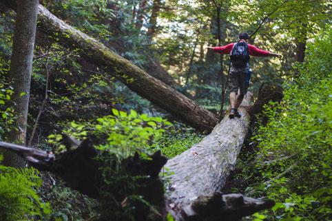 Alleine in der wilden Natur, sich selbst finden, Visionssuche, Übergang Ritual, Auszeit
