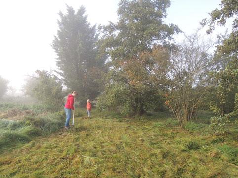 Bei der Pflege des Igginger Streuobstgrundstücks. Foto: S. Michel