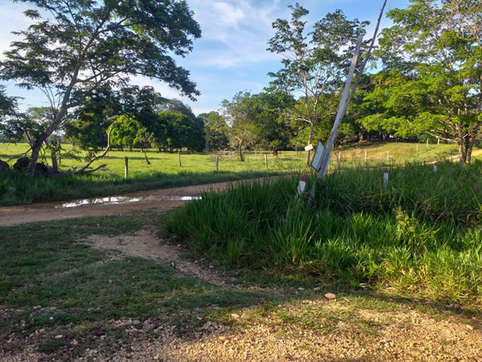 The rural areas of the region are seeing an increase in control by the dissident members of the FARC-EP (Photo José Darío Rodríguez Cuadros).