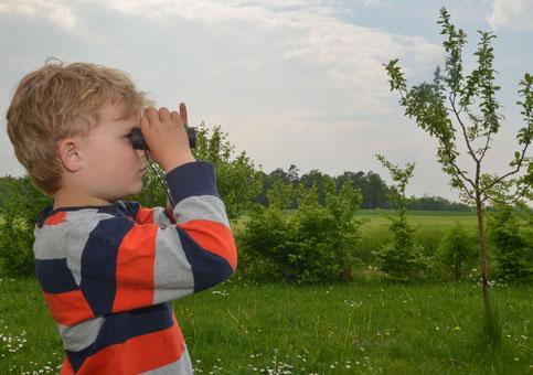 Vogelbeobachtung Foto: T. Tschapka
