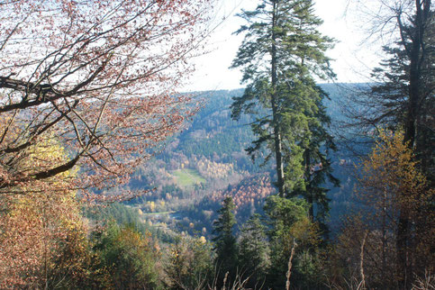 Blick vom Hangweg am Heuberg in Richtung Enztal/ Ausgang Eyachtal (G. Franke)