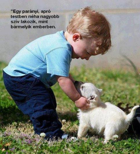 szép idézetek a gyermekről Gyermekekről szóló idézetek   Képes idézetek