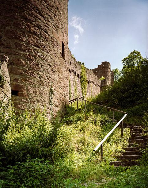 Hirschgraben der Burg