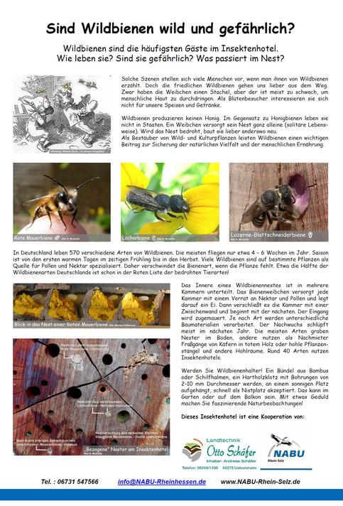 Plakat Insektenhotel  Projektorientiert