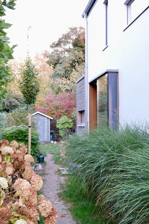 dieartigeGARTEN - Oktobergarten | Ballhortensien, Chinaschilf, Säulenbuche