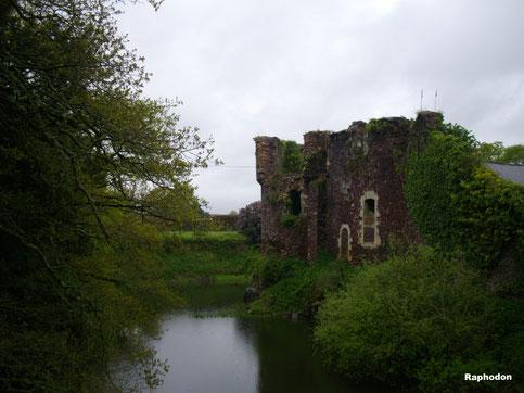 forêt Brocéliande, Bretagne, Ile et vilaine